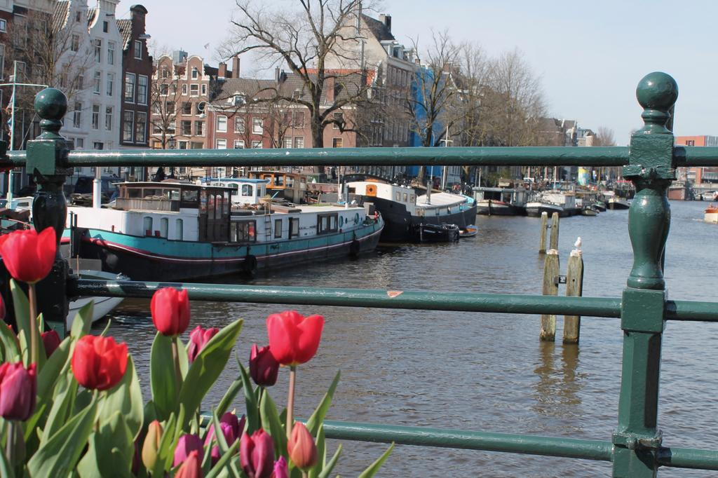 A359 private houseboat amsterdam city centre7